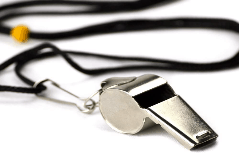 Stainless Steel Whistle with Lanyard